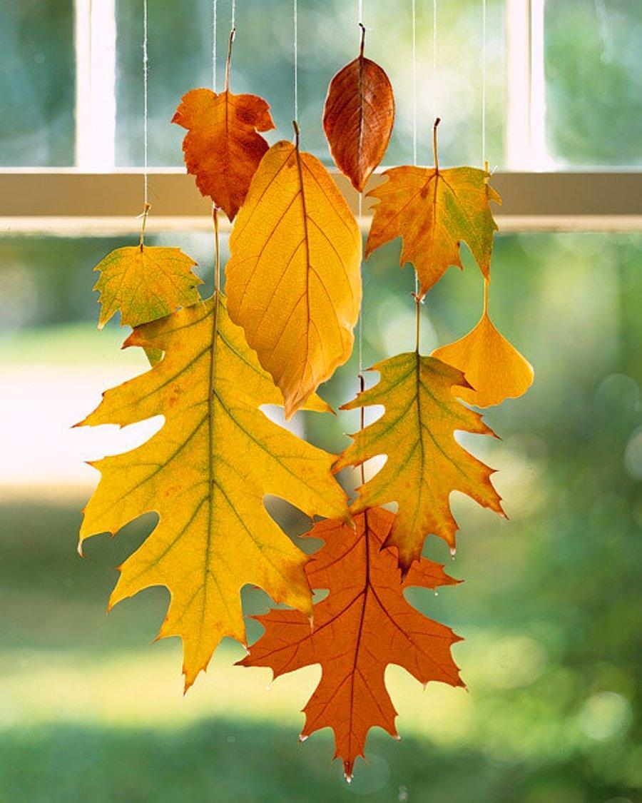 Sonbaharin Butun Renklerini Evinize Tasiyacak Yapraklardan 15