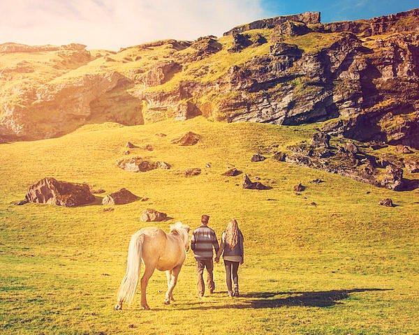 Иногда их сопровождали местные известные своей красотой исландские лошади.