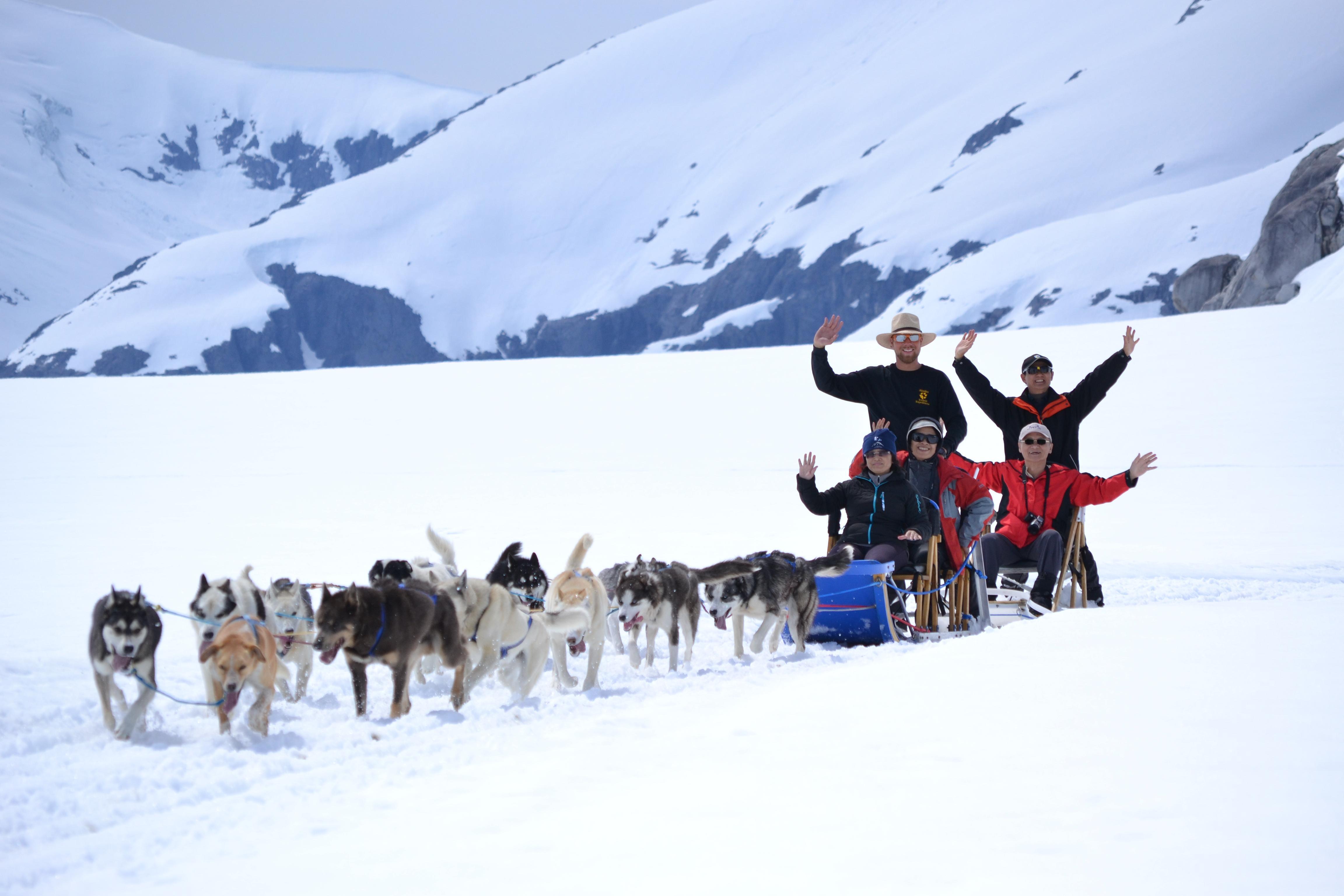 dog sledding - HD4608×3072