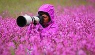 Vahşi Yaşam Fotoğrafçısı Olmanın Size Kazandıracağı 36 Benzersiz Tecrübe