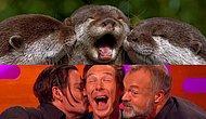 Benzetildiği Su Samuru Hayvanını Taklit Eden Benedict Cumberbatch'a Çok Güleceksiniz!