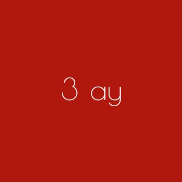 3 ay!
