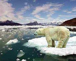 İklim Adaletinin Kırmızı Çizgileri Çiziliyor | Baran Alp Uncu