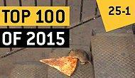 2015 Yılının En İyi 100 Viral Videosu | Bölüm 4