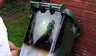 Çöp Kutusuna Yaptığı Manzara Fotoğrafı ile Bob Amcayı Kıskandıracak Muhteşem Yetenek