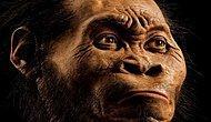 2015 Yılında Dünyadan En Önemli 10 Arkeolojik Keşif