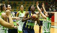 İstanbul Üniversitesi 48-94 Fenerbahçe