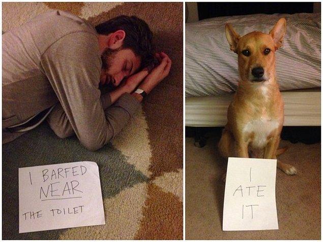 И может накормить собаку неординарным способом.
