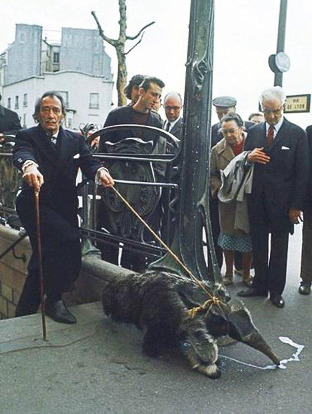 3. Salvador Dali evcil hayvanı karıncayiyeniyle metro çıkışında. 1969.
