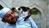 Bu Hocanın Dediğini Yap Yaptığını da Yap: Camisini Sokak Kedilerine Açan Hayvan Dostu İmam