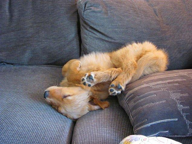 На диване в невообразимой позе.