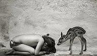 Altı Çocuk Babası Fotoğrafçıdan Görür Görmez Aile Kurmak İsteyeceğiniz Eşsiz Kareler
