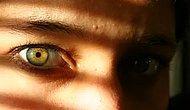 Ela Gözlülerin Özellikleri