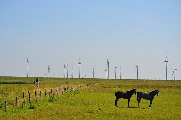 4. Danimarka'da rüzgar santrallerini görüp insanlık ve geleceğimiz adına umutlanıyoruz.