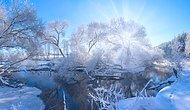 Kış Hiç Bu Kadar Sihirli Olmadı: Alex Ugalnikov'un Kamerasından 20 Harika Fotoğraf