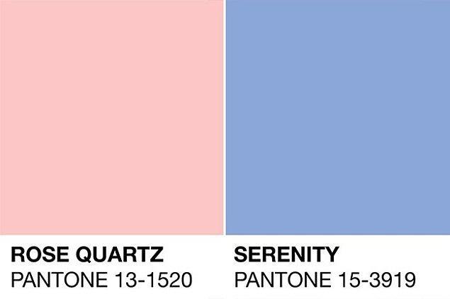 İlk bakışta hastanelerin doğum katındaki renklere benzeyen bu iki yumuşak ton; cinsiyet eşitliğine vurgu yapmak için seçilmiş.