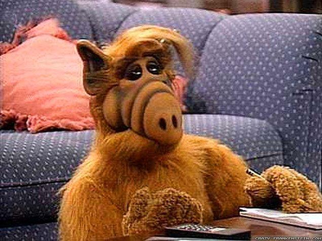 6. Alf.