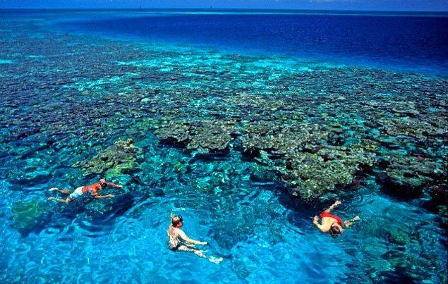 1. Belize Bariyer Resifi / Belize