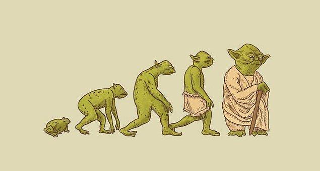 12. Yoda'nın evrimi