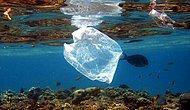 Adalar'da Naylon Poşet Yasağı
