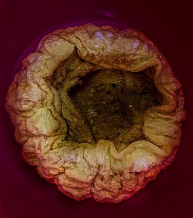 12. İçine kaçan omlet