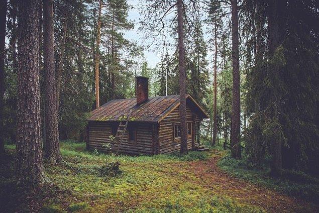 4. Ormanın derinliklerine dalıyoruz şimdi de, nasıl hissediyorsun?