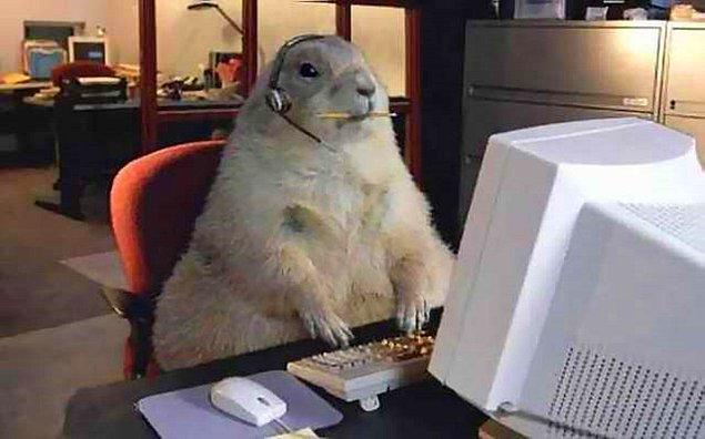 1. Bilgisayar başında çalıştığınızı söylediğinizde ne kadar da kolay bir işiniz olduğu söylemlerini çok fazla duyarsınız.