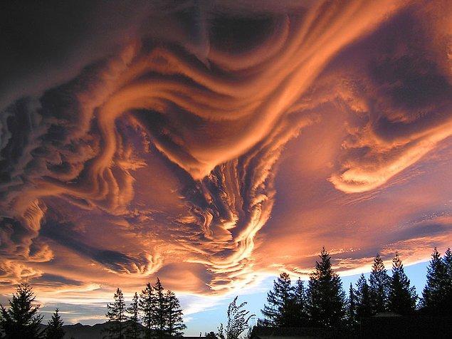 10. Yeni Zelanda Üzerinde Asperatus Bulutları