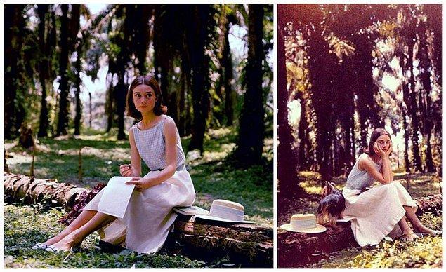 13. Audrey Hepburn Kongo'da, 1958.
