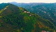 Drone Pilotları Karadeniz İçin Uçtu: 'Karadeniz Hep Yeşil Kalsın...'