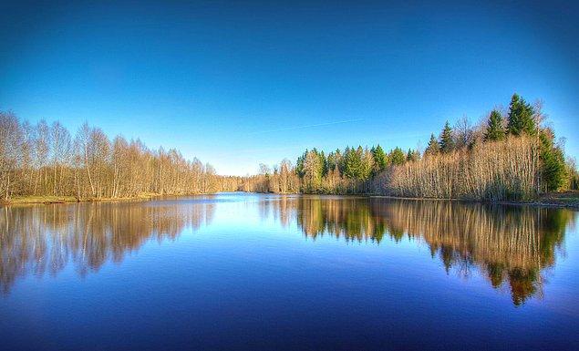 4. Ülkenin neredeyse yarısı ormanlarla kaplı, böyle de yeşil sevdalısı.