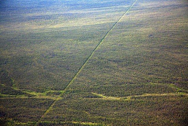 Dünyanın en uzun kara sınırı Kanada ile ABD arasındaki sınırdır ve bu sınırda askeri güvenlik yoktur.