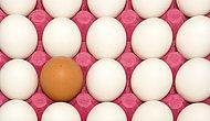 Şimdiye Kadar İnandığımız Ancak Tamamen Bir Yalan Olan 15 Yemek Efsanesi