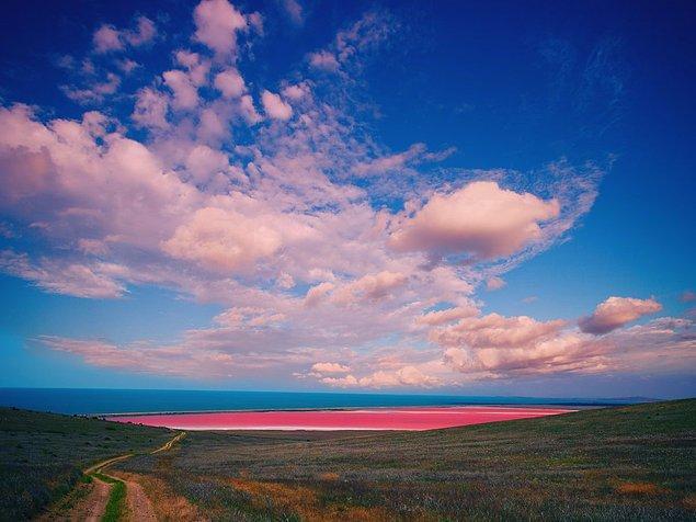 Если набрать в бутылку воду из озера Хиллиер в Австралии, она все равно останется розовой. Необычный цвет остается загадкой, однако есть предположение, что это все благодаря высокому содержанию солей и присутствию популяций розовой бактерии.