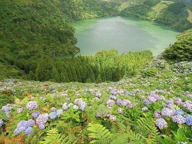 Остров Флориш, что находится на западе Португалии, знаменит тем, что покрыт прекрасными цветами. Здесь также есть замечательные лагуны, где можно поплавать и расслабиться.