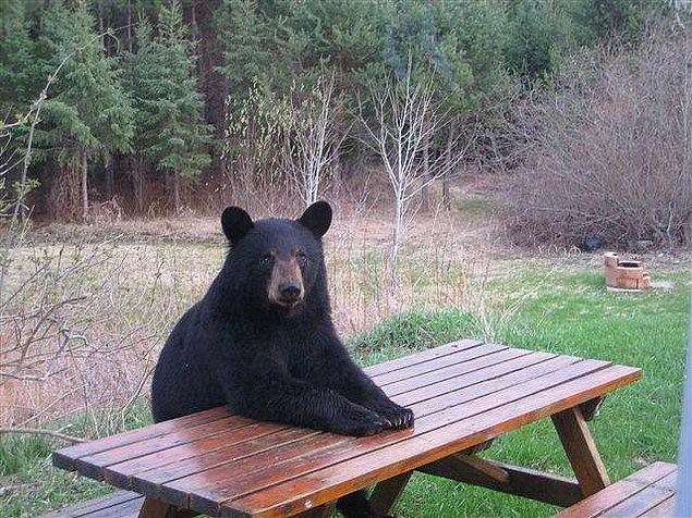 Присядь-ка, надо поговорить.