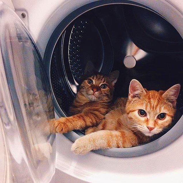 7. Çamaşır makinesini de ^^