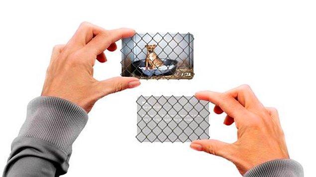 12. Bu interaktif kartvizit, hayvan hakları organizasyonlarının hayat değiştirici etkisini gözler önüne seriyor.
