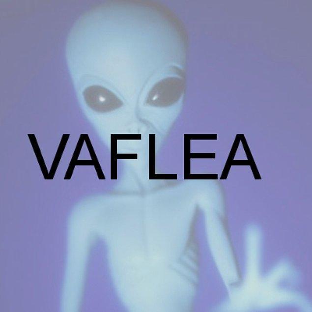 VAFLEA!