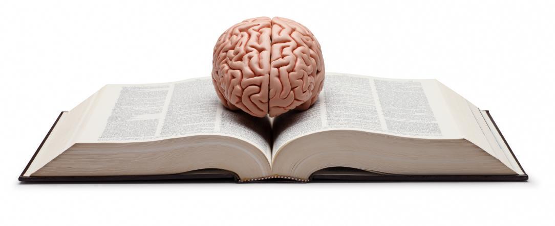 Bilim İnsanları Tarafından Önerilen ve İnsan Beynini Farklı Şekillerde Etkileyen 17 Kitap