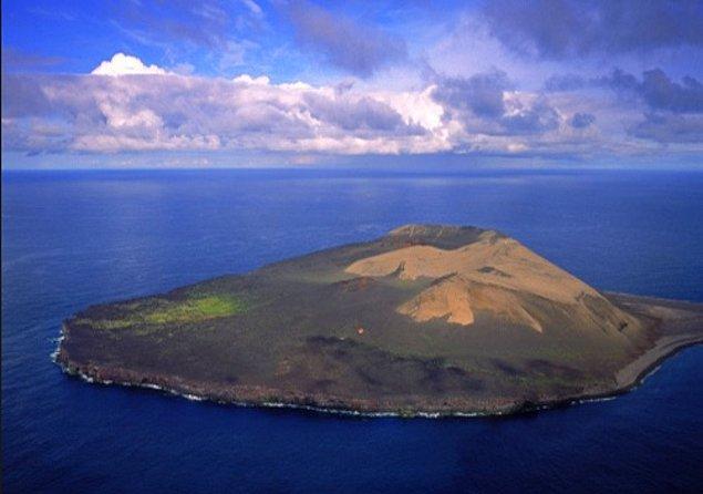 21. 40 yıllık tarihi olan volkanik Surtsey Adası'nda bir domates bitkisi bulundu. Bitkinin oraya nasıl gelmiş olabileceği araştırılınca, bitkinin geçmişte adaya gelen bilim adamlarından birinin toprağa tuvaletini yapması sonucu ortaya çıktığı anlaşıldı.
