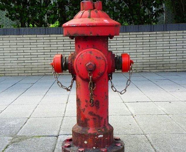 24. Patenti bir yangın sırasında yok olduğu için, kimse yangın söndürme musluğunu kimin icat ettiğini bilmiyor.