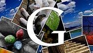 Google'ın Fotoğraf Kaydetme Özelliği Artık Masaüstü İçin de Kullanılabiliyor
