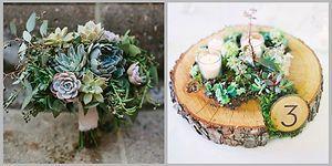 23 идеи применения суккулентов в свадебном декоре