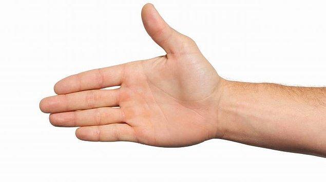 11. Ellerine bakmadan olmaz! Hangi tarif senin ellerine uyuyor?
