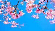 Baharı En #banabak Halimizle Karşılarken Hayatımızda Değişen 10 Şey
