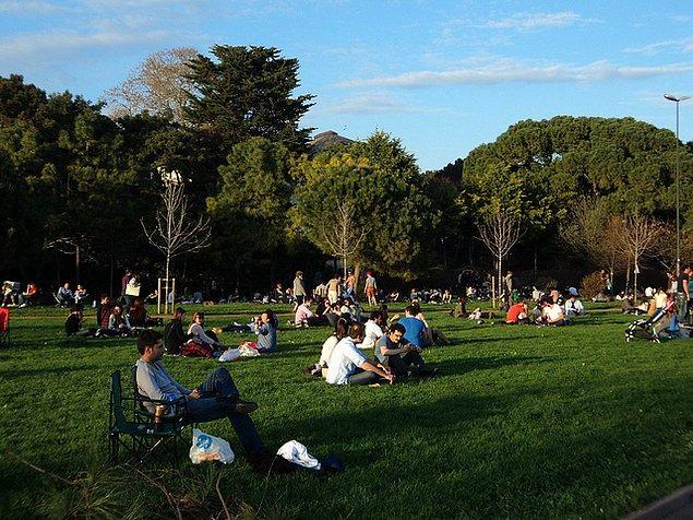 6. Parklar, bahçeler