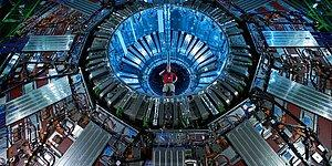 Gelincik, CERN'deki Hadron Çarpıştırıcısı'na Kısa Devre Yaptırdı