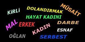 Türk Dil Kurumu'nun Hangi Kafayla Açıkladığını Bilemediğimiz, Tepki Almış 16 Kelime Anlamı