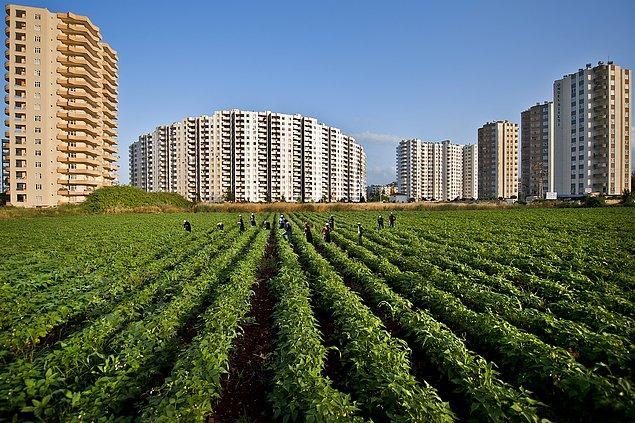 9- Konut yapımı için tarım arazilerinin seçilmesi.
